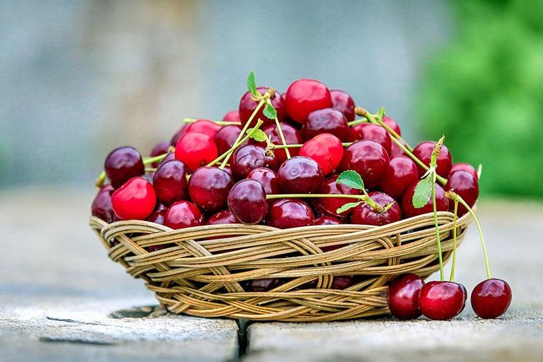 Cherries for Sleep