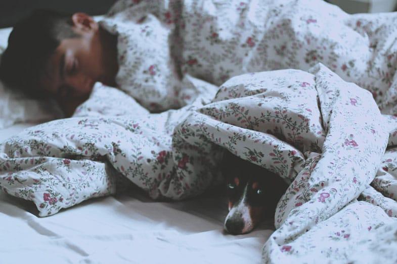 Single Man Sleeping on Bed