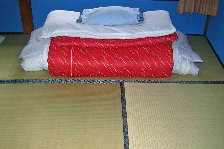 Tatami Mats in Japanese Room